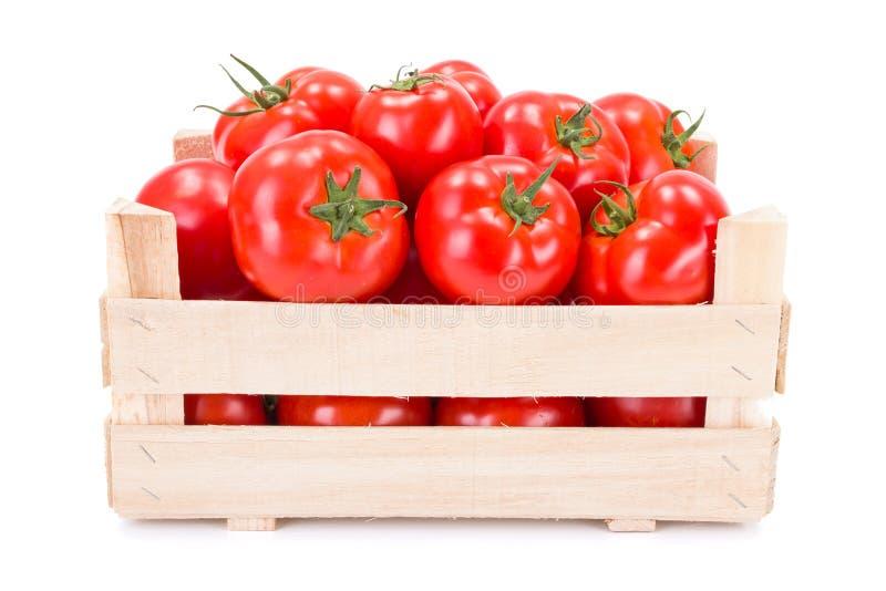 Tomates (lycopersicum de la solanácea) en cajón de madera fotografía de archivo