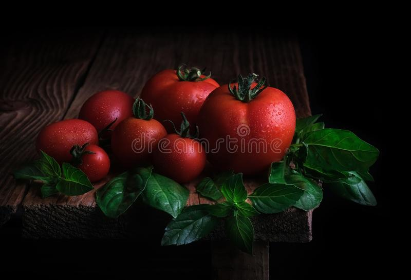 Tomates maduros vermelhos com gotas da água e das folhas da manjericão fresca em uma tabela de madeira Alimento biol?gico imagens de stock royalty free