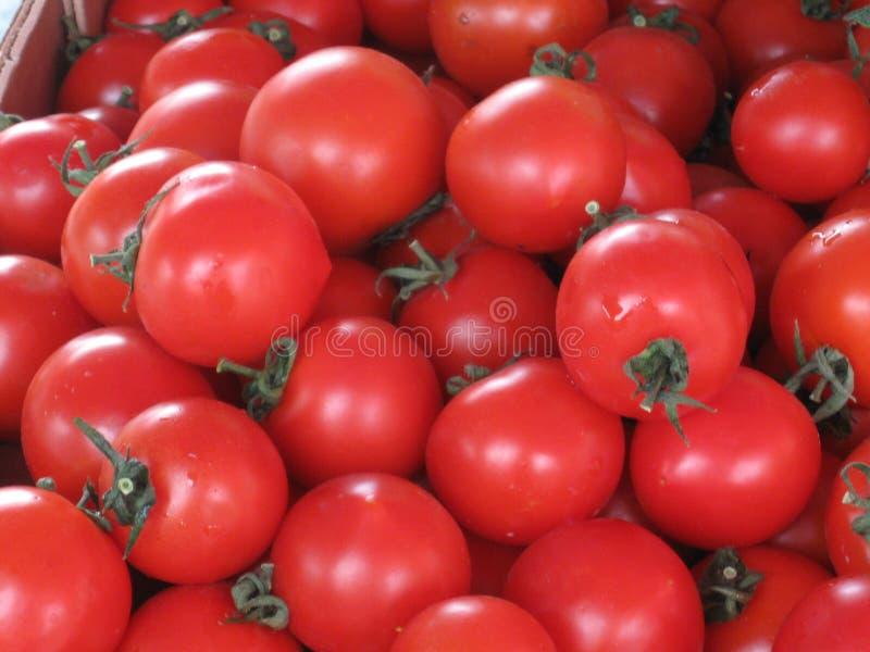 Tomates mucho tomate bazar Verduras para la venta Producto-veh?culos frescos de vegetables Tomates grandes fotografía de archivo libre de regalías