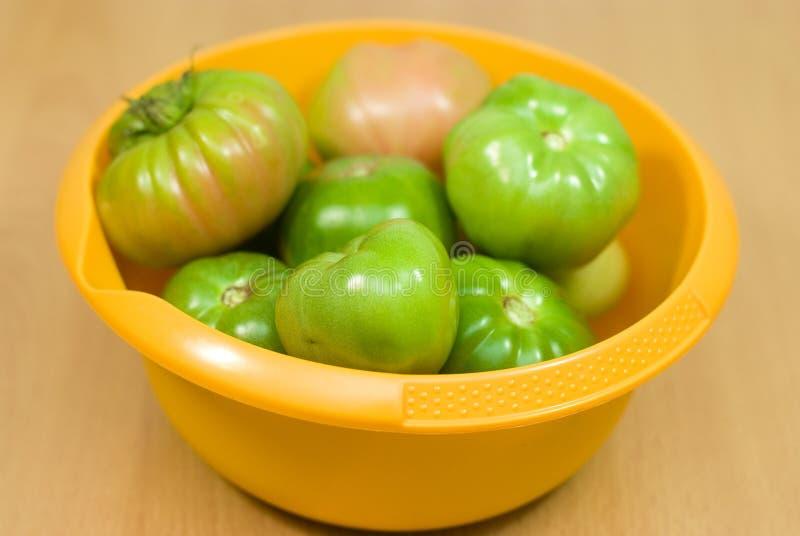 Tomates orgánicos verdes imagenes de archivo