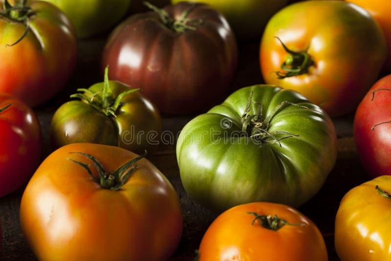 Tomates orgânicos coloridos da herança fotografia de stock royalty free