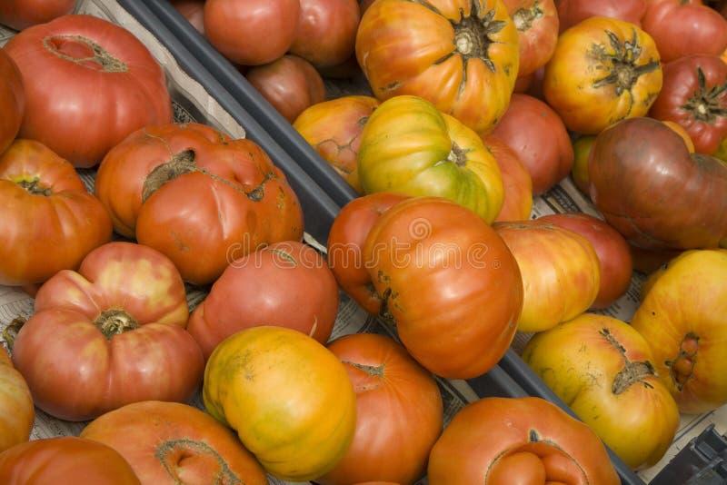 Tomates orgânicos da herança do mercado dos fazendeiros fotos de stock