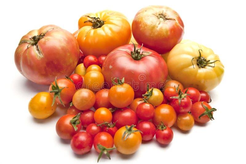 Tomates organiques d'héritage photographie stock