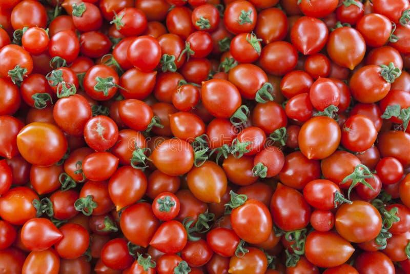 Tomates organiques du marché de village Fond qualitatif des tomates Tomates fraîches Tomates rouges photo libre de droits