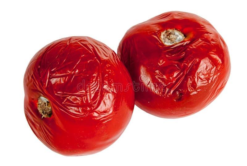 tomates putréfiées image libre de droits