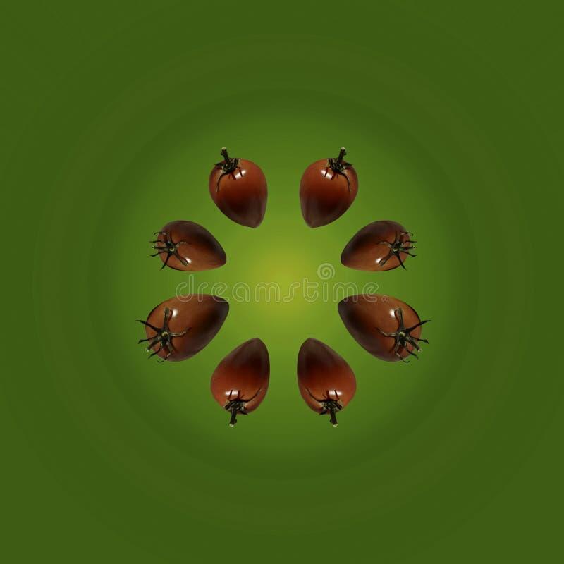 Tomates red delicious en un fondo verde claro fotografía de archivo libre de regalías