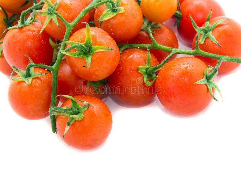 Download Tomates rojos imagen de archivo. Imagen de clases, pulpa - 41906181