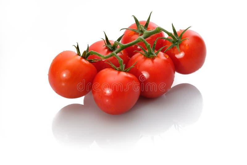 Tomates rojos con descensos del verde y del agua fotografía de archivo