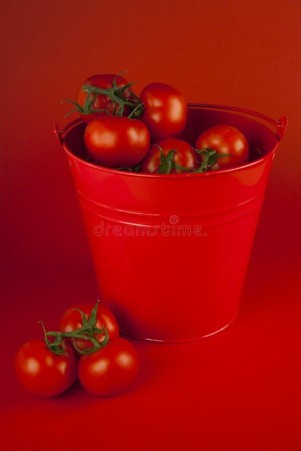 Tomates rojos en un cubo fotografía de archivo