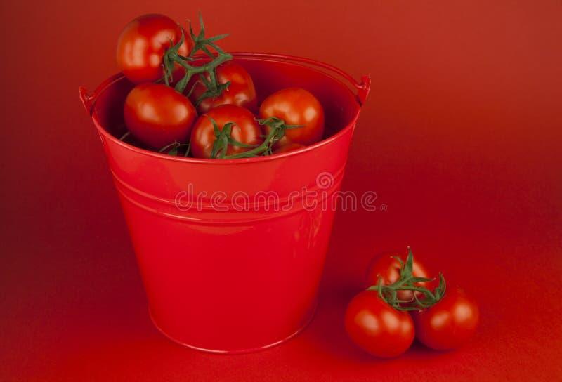 Tomates rojos en un cubo fotos de archivo libres de regalías