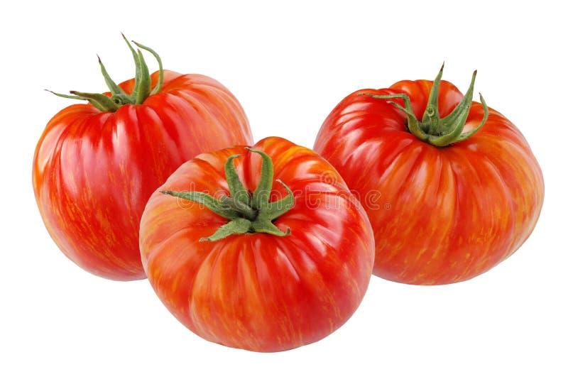 Tomates rojos maduros con las rayas anaranjadas aisladas en blanco fotografía de archivo