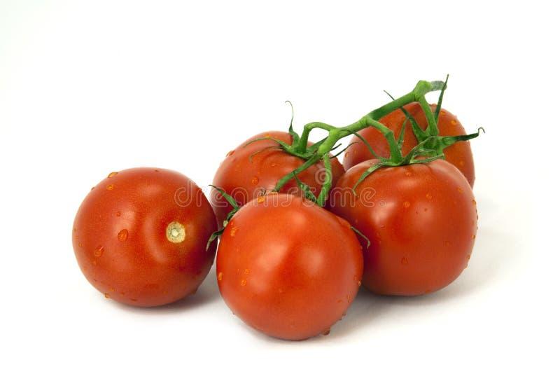 Tomates rojos perfectamente maduros imágenes de archivo libres de regalías