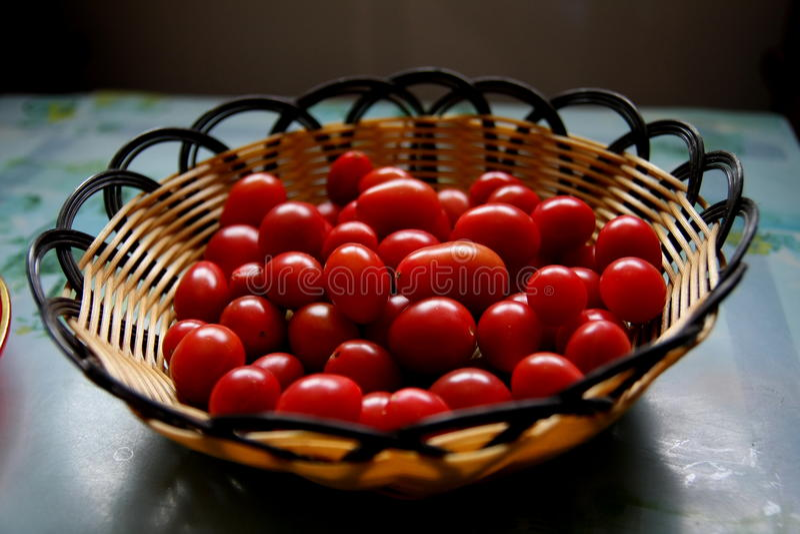 Tomates rouges photos libres de droits