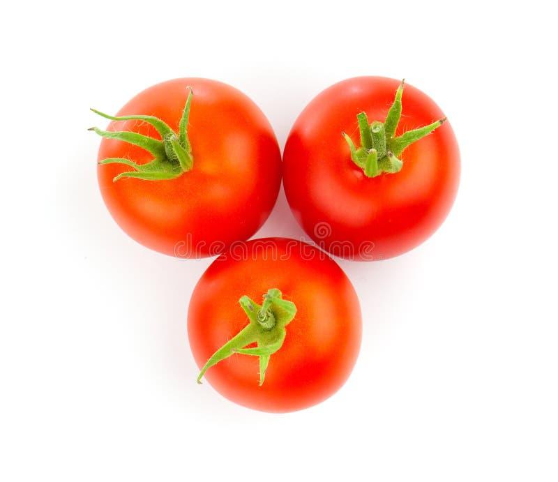 Tomates rouges photo stock