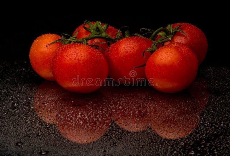 Tomates rouges dans la baisse de l'eau image stock