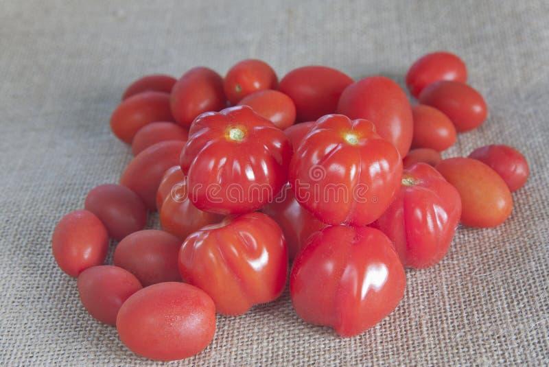 Tomates rouges sur la toile de jute images libres de droits