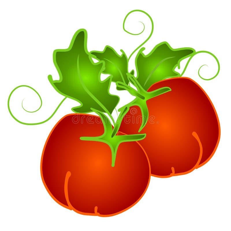 Tomates rouges sur le clipart (images graphiques) de vigne illustration libre de droits