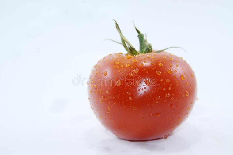 Tomates rouges sur un fond blanc image stock