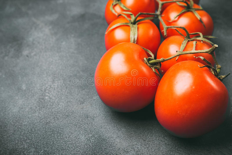 Tomates suculentos frescos em um fundo cinzento foto de stock royalty free