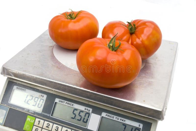 Tomates sur les échelles images libres de droits