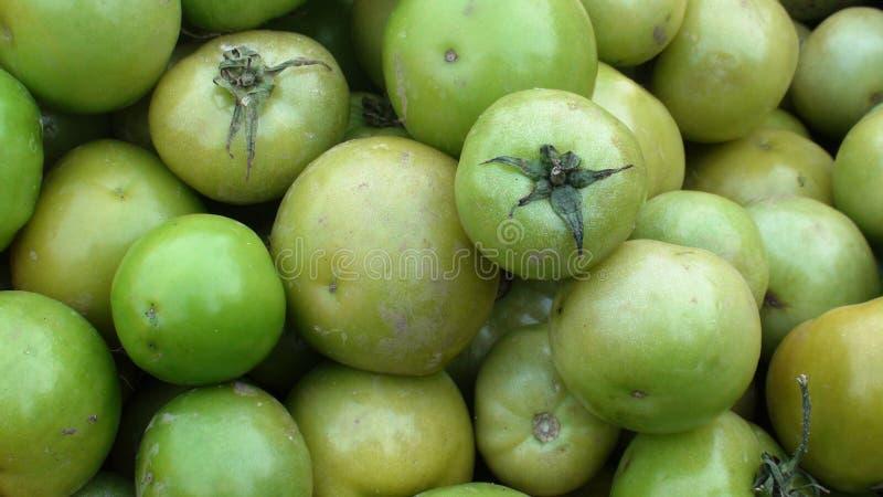 Download Tomates verdes imagem de stock. Imagem de agricultura - 12807569