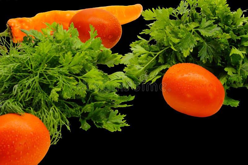 Tomates, verdes do aneto e pimentas em um fundo preto isolação imagem de stock royalty free
