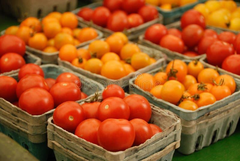Tomates vermelhos e amarelos fotos de stock