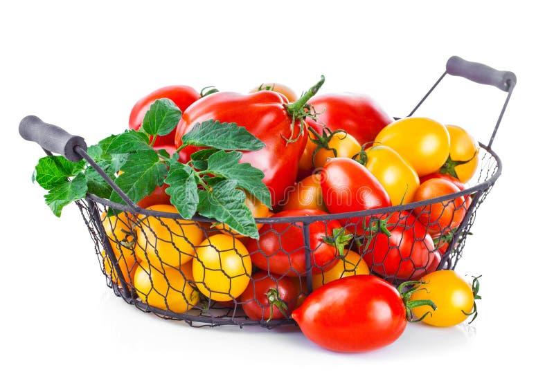 Tomates vermelhos e amarelos da cesta com folha verde foto de stock royalty free