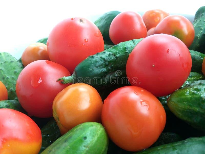 Tomates vermelhos e pepinos verdes no fundo branco fotografia de stock royalty free