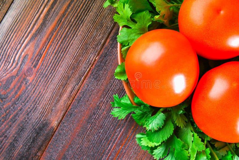 Tomates vermelhos frescos com coentro em uma tabela de madeira fotos de stock royalty free