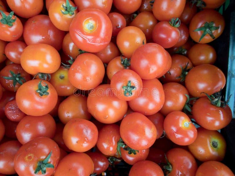 Tomates vermelhos frescos em um mercado foto de stock