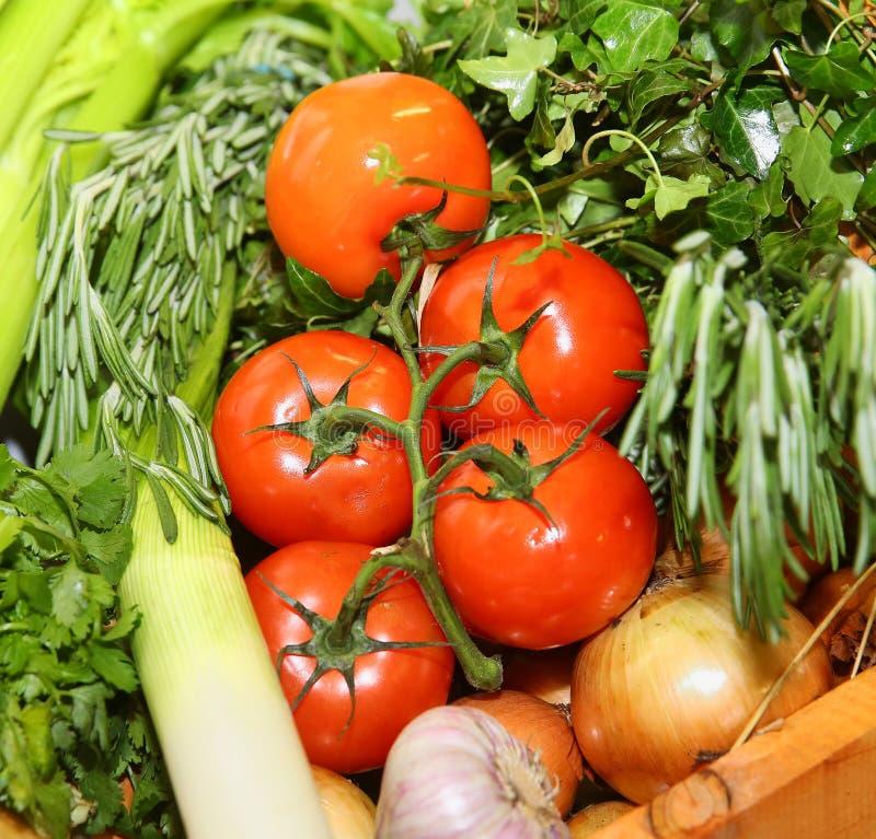 Tomates vermelhos frescos em um ramo com cebolas, alho e ervas fotos de stock royalty free