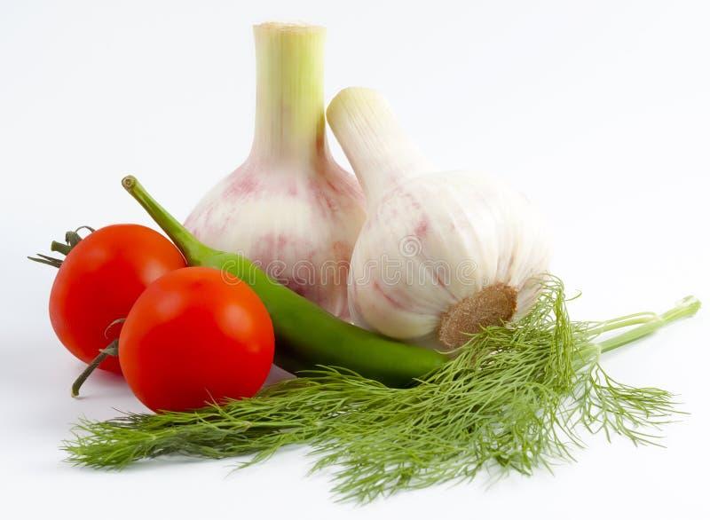 Tomates vermelhos pequenos, pimenta verde, alho novo, aneto imagem de stock
