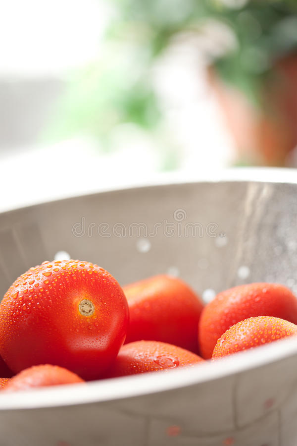 Tomates vibrantes de Roma en colador con agua fotografía de archivo libre de regalías
