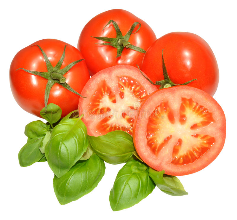 Tomates y Basil Herb frescos imagen de archivo libre de regalías
