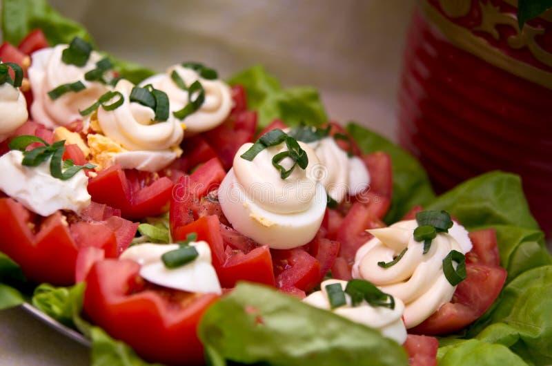 Tomates y mayonesa fotografía de archivo