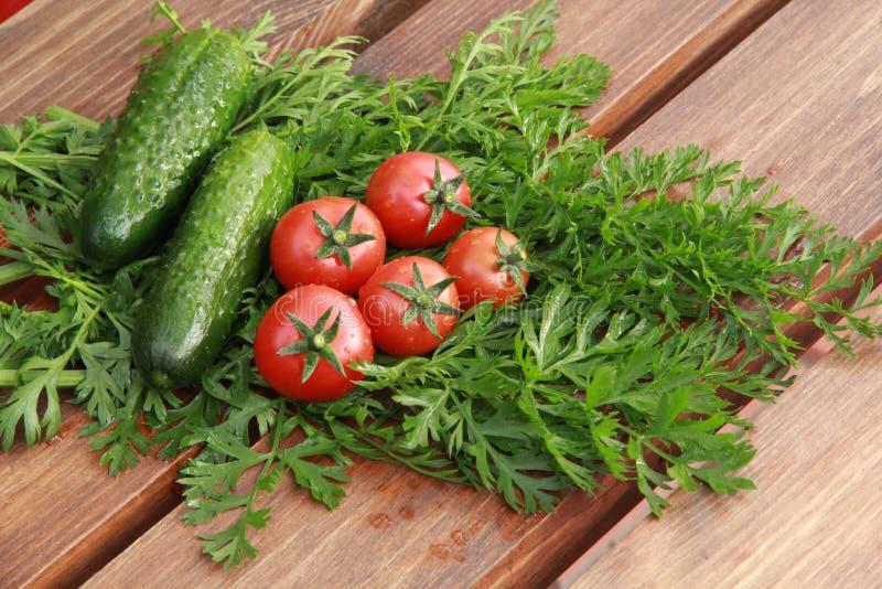 Tomates y pepinos foto de archivo