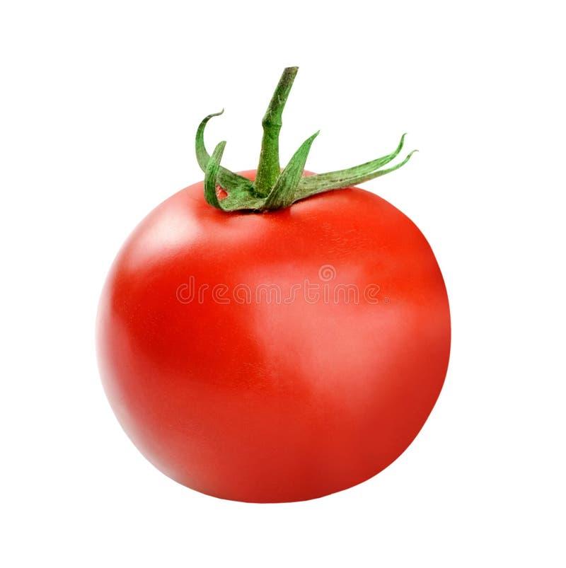 Tomatescheibe getrennt stockfotografie