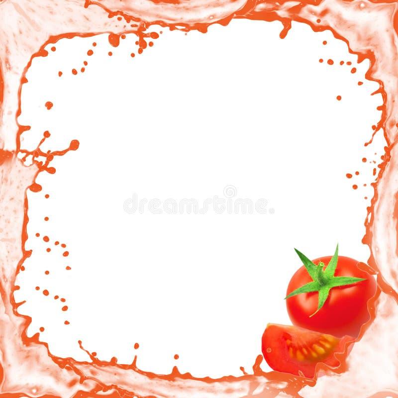 Tomatespritzen stockbild
