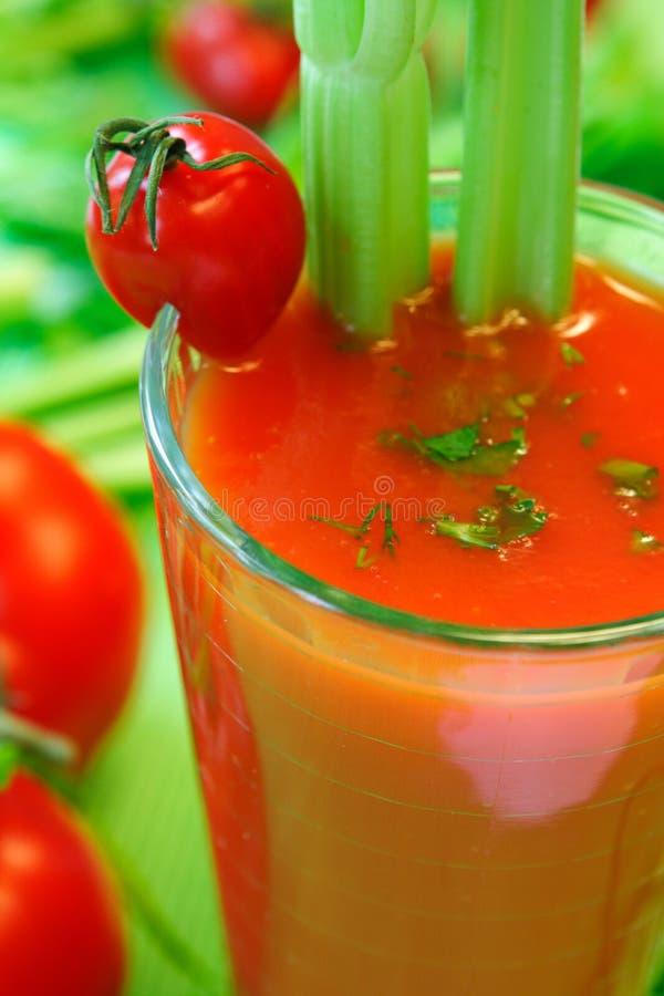 Tomatgrönsakcoctail arkivbild