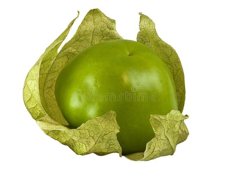 tomatillo 免版税图库摄影