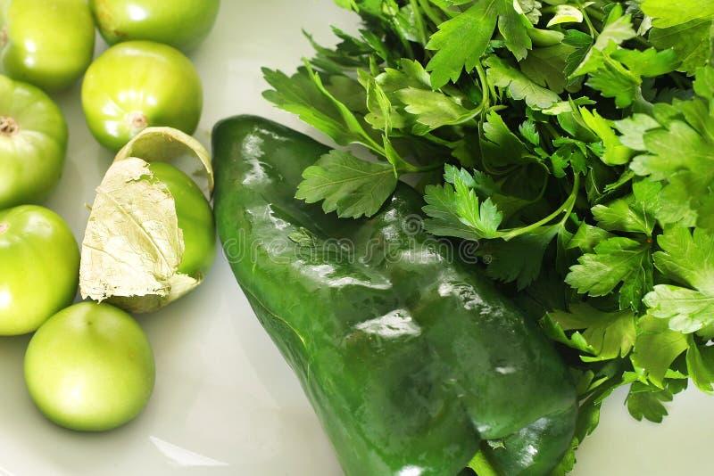 tomatillo salsa συστατικών στοκ εικόνες