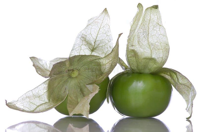 Tomatillos royalty free stock photo