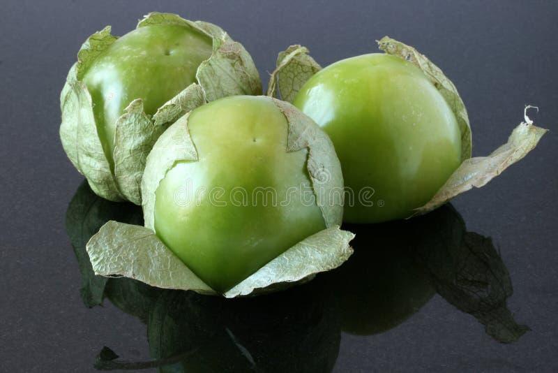 tomatillos royaltyfria foton