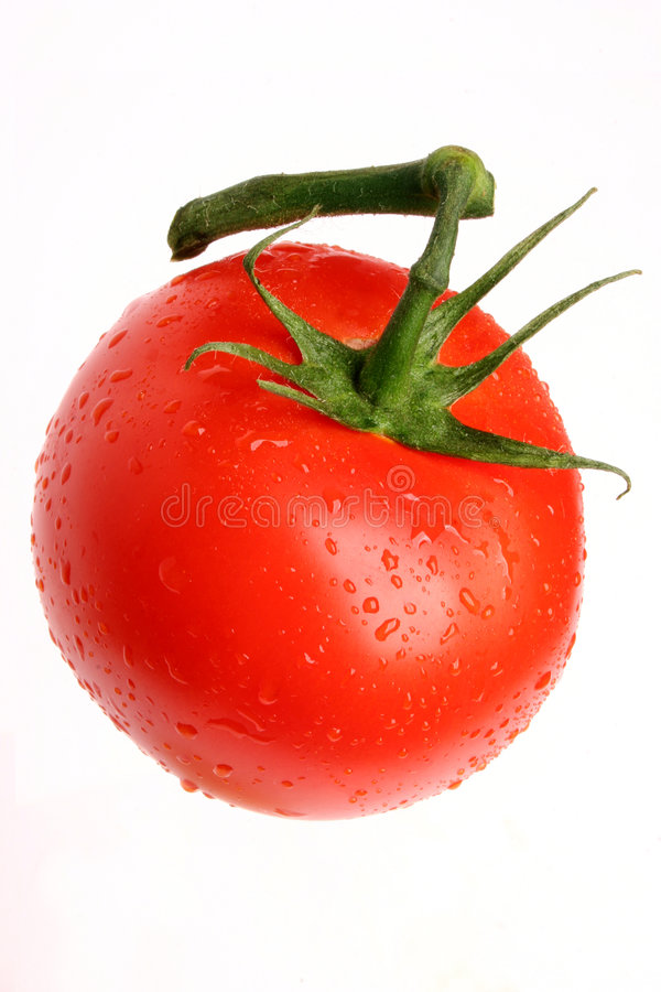 Tomato 03 stock photos