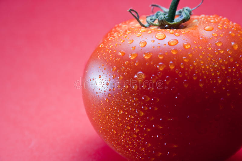 Download Tomato stock image. Image of life, color, healthy, vegetable - 12926929