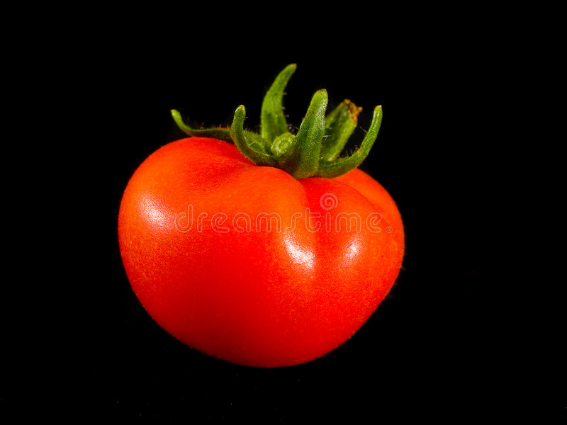 Download Tomato stock image. Image of cooking, plant, food, natural - 154363