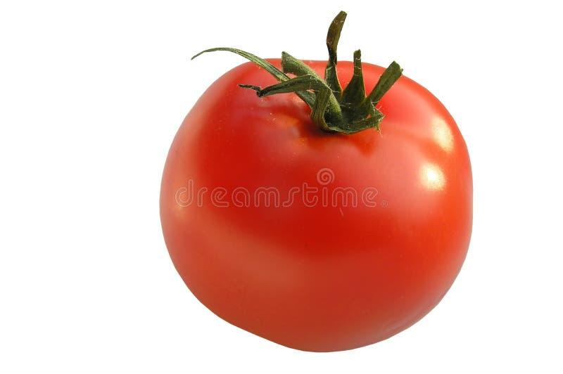 Download Tomato stock photo. Image of isolated, garden, farm, detail - 162944