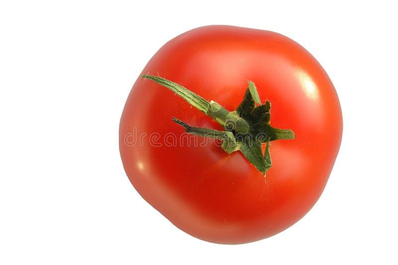 Download Tomato stock photo. Image of shine, vegetarian, tomato - 162946