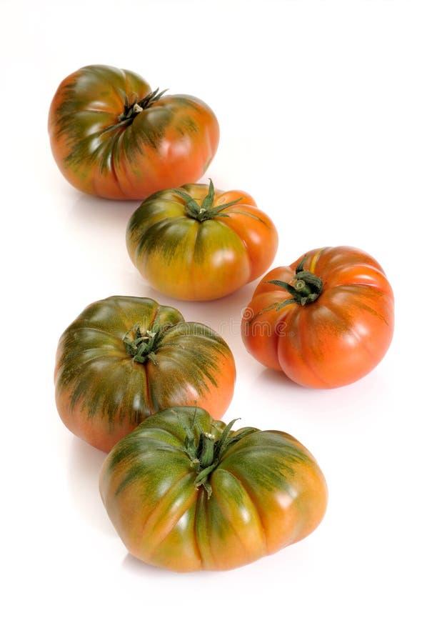Free Tomato Royalty Free Stock Images - 19172039